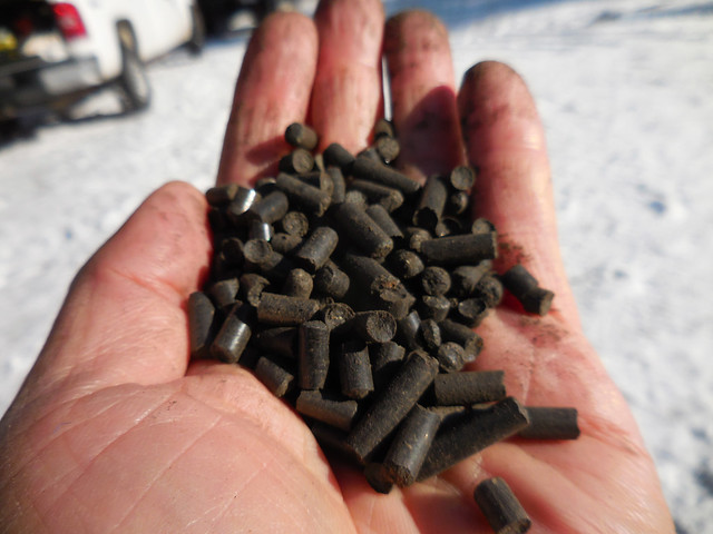 Biochar pellets are easy to transport and spread. USDA Forest Service photo by Deborah Page-Dumroese.